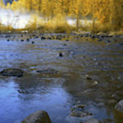 Yosemite River In Yellow Poster