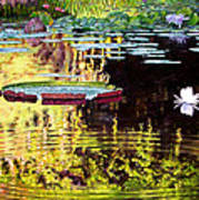 Ripples On A Quiet Pond Poster