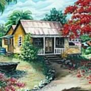 Trinidad Life  Poster