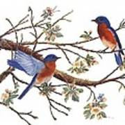 Bluebirds And Apple Blossoms Poster