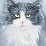 Cat Print Pet Portrait Artist For Hire Commission Poster