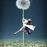 Dandelion Dancer Poster