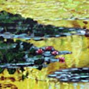 Golden Lily Pond Poster