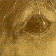 Horsepia Poster