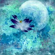 Lotus Moon Poster