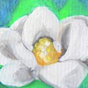 Magnolia Continues Poster