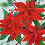 Poinsettias Poster