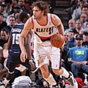 Robin Lopez Poster