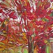Rowan tree Poster