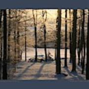 Sparkling Frosty Morning Poster