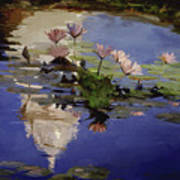 The Dome - Water Lilies Poster