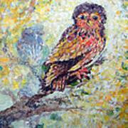 Acrylic Painting Fuzzy Yellow Owl  Art Print