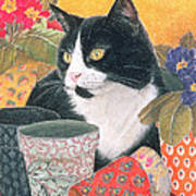 Bhajii And Flowerpots Art Print