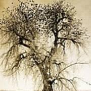 Bird Tree Fine Art  Mono Tone And Textured Art Print