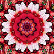 Floral Abundance  Art Print