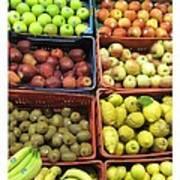 Fruit Assisi Italy Market Art Print