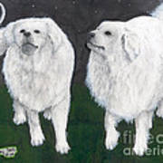 Great Pyrenees Dogs Night Sky Cathy Peek Animal Art Art Print