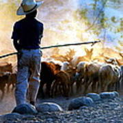 Herder Going Home In Mexico Art Print