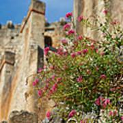 Italian Ruins In The Near Of The Lake Garda Art Print