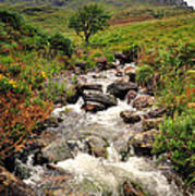 Kerry Mountains Art Print