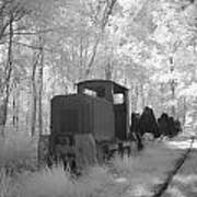 Locomotive With Wagons In Infrared Light In The Forest In Netherlands Print by Ronald Jansen
