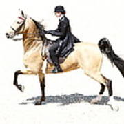 Lovely Gaited Buckskin  Art Print