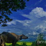 Philippine Countryside Art Print