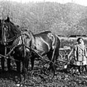 Plowing The Land C. 1890 Art Print
