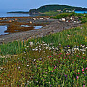 Rocky Harbour In Gros Morne Np-nl Art Print