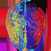 Shiny Brain Art Print by Soumya Bouchachi