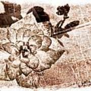 Thumbelina Rose - Miniature Rose - Digital Paint II Art Print