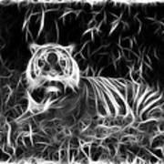 Tiger Spirit Art Print