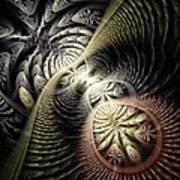 Trilobite Trail Art Print