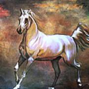 Wild Horse. Art Print