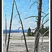 Yellowstone Park Art Print