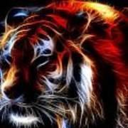 0012 Siberian Tiger Art Print