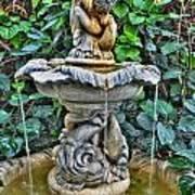 002 Fountain Buffalo Botanical Gardens Series Art Print