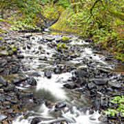 0106 Columbia River Gorge Near Bridal Veil Falls Art Print