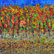 035 Fall Colors Art Print