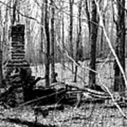 072606-32bw  Once Upon A Time There Was A Cabin In A Forest.. Art Print