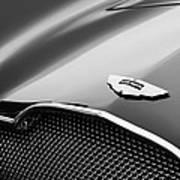 1953 Aston Martin Db2-4 Bertone Roadster Hood Emblem Art Print by Jill Reger