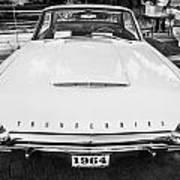 1964 Ford Thunderbird Painted Bw  Art Print