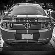2013 Ford Shelby Mustang Gt500 Art Print