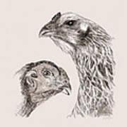 51. Game Hens Art Print