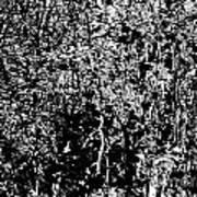 1-66 Manifestations Of Eternity Art Print
