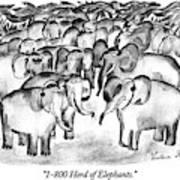 1-800 Herd Of Elephants Art Print