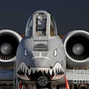 A-10 Warthog Art Print