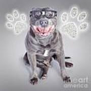 Access To Smart Dog Training Art Print