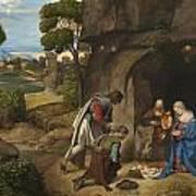 Respect Amd Love Of The Shepherds Art Print