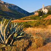 Adriatic Landscape Art Print